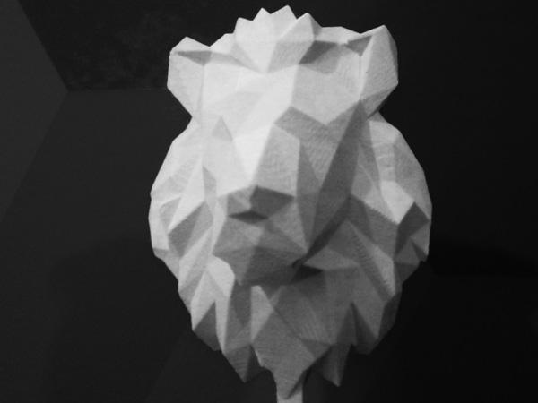 leone origami_600x800