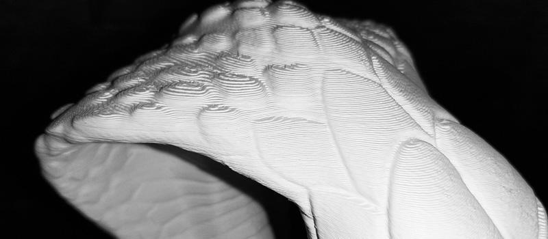 testa serpente 06